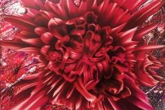 Petals_for_NovaeRED