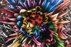 petals_for_novae_Web